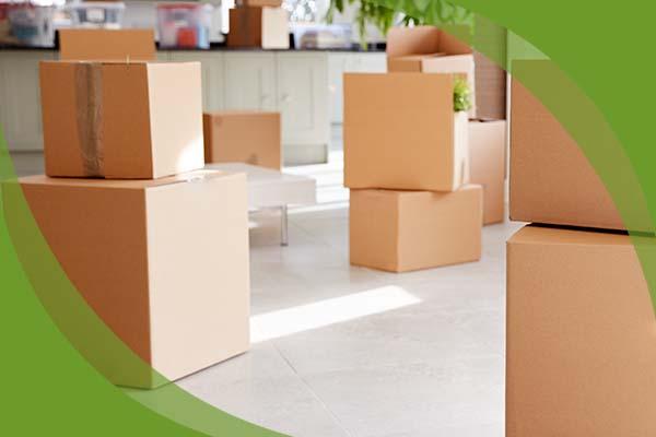 Möbelpacker Burgenland